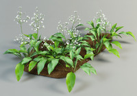 alisma plantago mad-dog obj