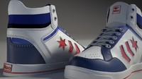 max sport shoe