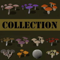 3ds max cartoon fungus mushroom boletus