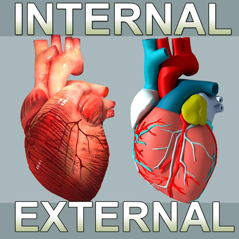 3d 3ds heart internal external