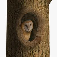 AB Owl Tree