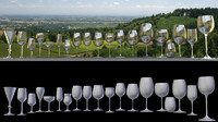3d 19 wine glasses flute model