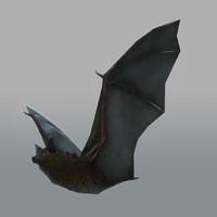 bat Animated & Rigged