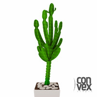 3d model potted plants 03