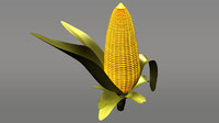 maize corn grain obj