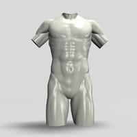 Male torso12011