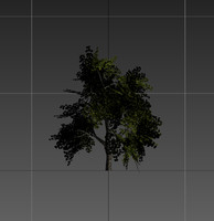 maya tree resolution gameready
