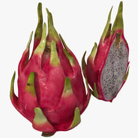 dragonfruit set 3d obj