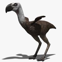 maya phorusrhacos bird