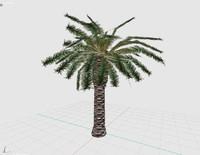 3d palm render