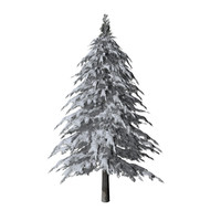pine tree covered snow 3d model