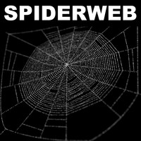 spiderweb web 3d model