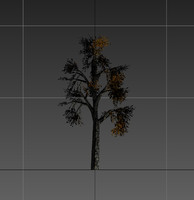 3d tree resolution gameready model