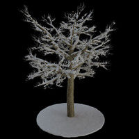 tree 8 branches snow 3d model