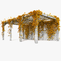 Wooden Autumn Yellow Pergola With Ivy Plant