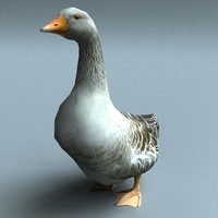 goose real time 3d model