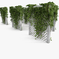 Green Ivy On White Garden Wooden Fence