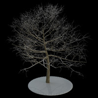 3d tree 6 branches snow