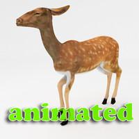 3d deer character dynamic model