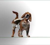 beagle dog obj
