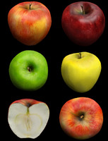 apples red yellow green 3d obj