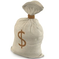 3dsmax money bag