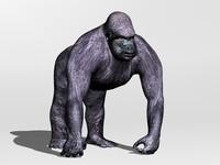 gorilla 3ds