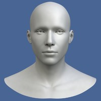 3d model polygonal male head character
