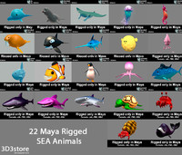 ma cartoon sea animals