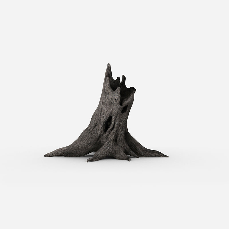 tree stump 01.jpg