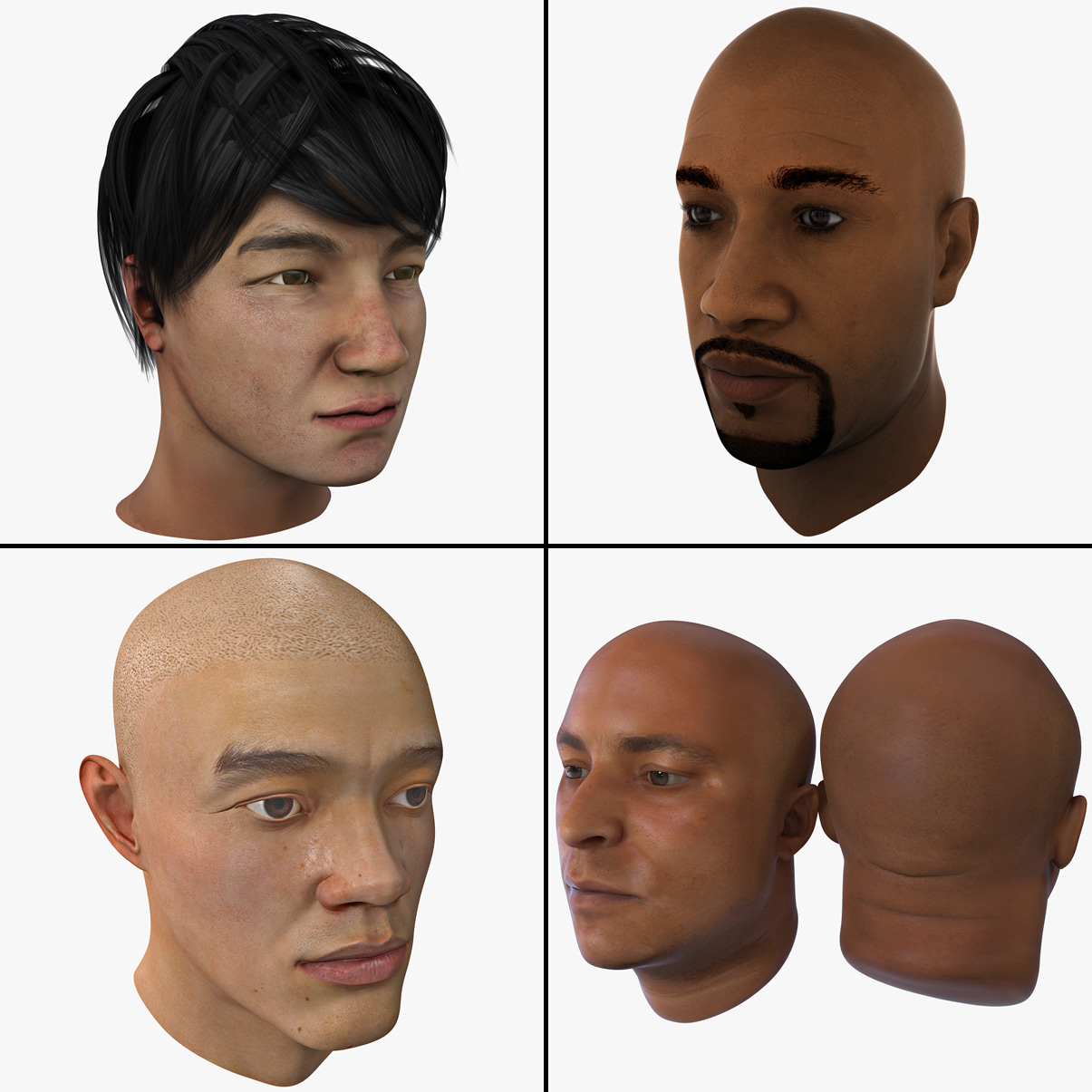 Male Head Collection.jpg