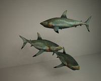 sharks 3d model