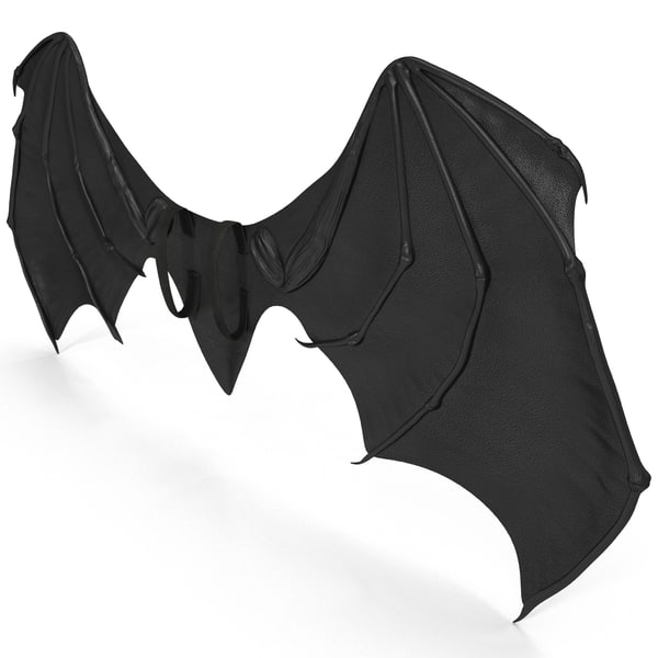 Bat wings costume accessories - photo#12