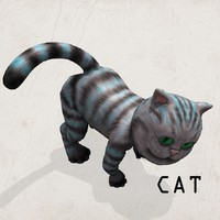 poser cat