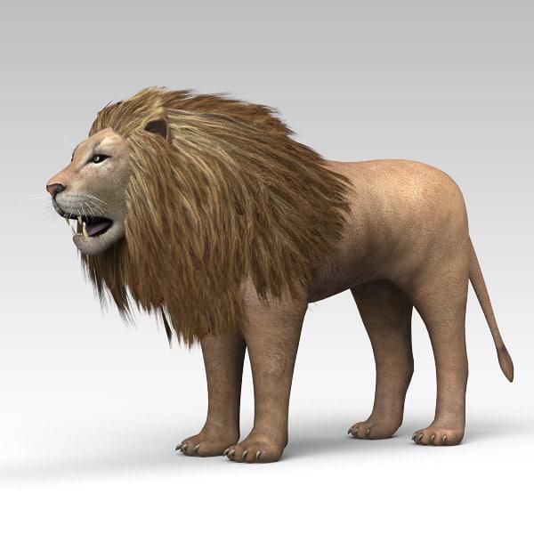 Lion_01.jpg