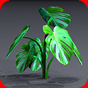 3d home plants flowers