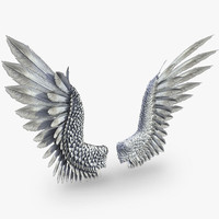 3d model bird angel wings