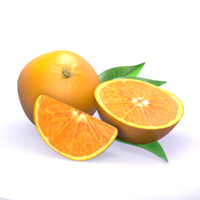 3d orange half slice