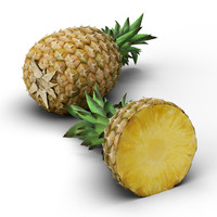 pineapple realistic 3d model