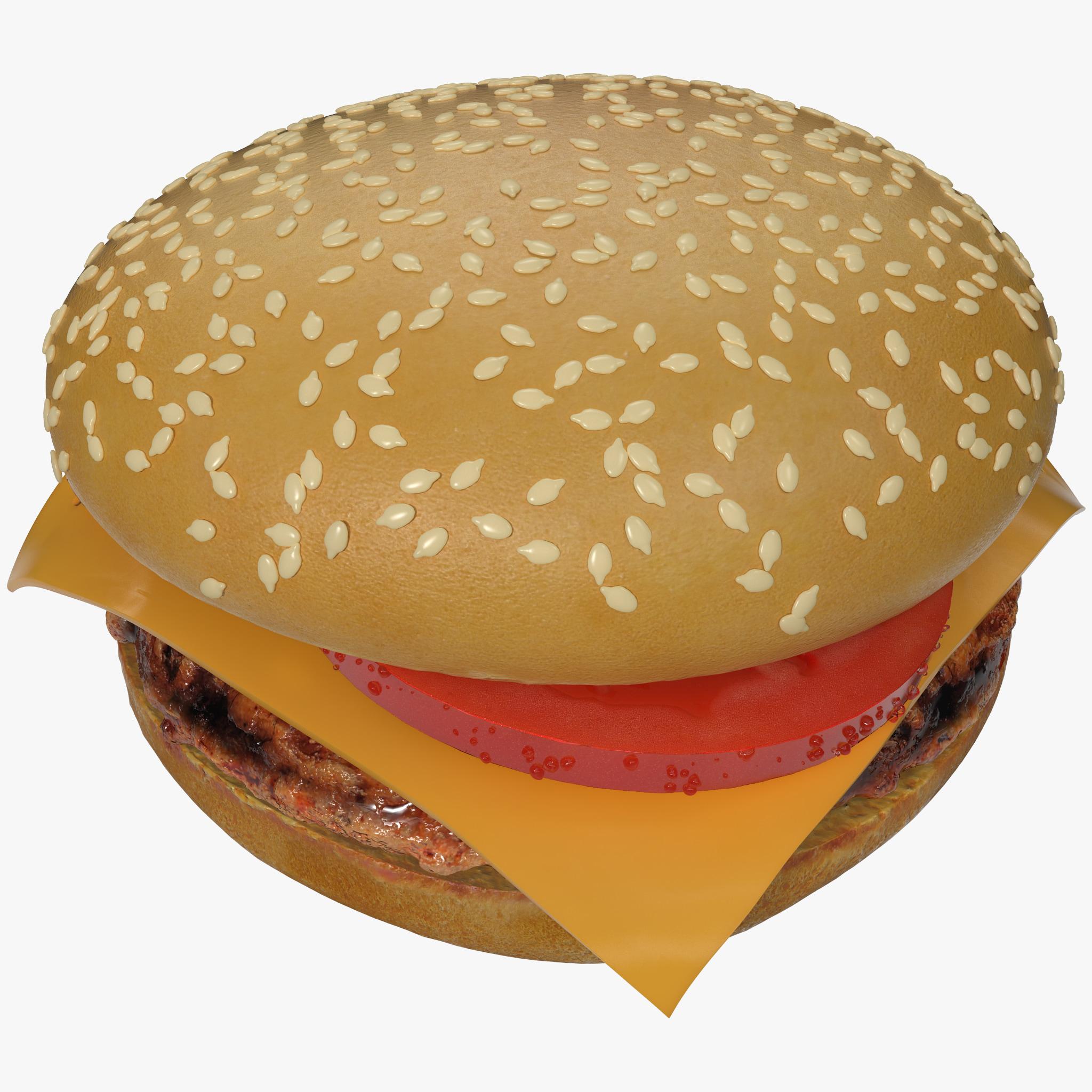 Hamburger 2_1.jpg