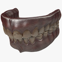 human old teeth 3d max