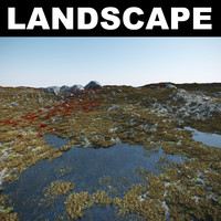 tundra landscape 3d model