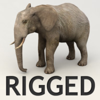 rigged elephant 3d 3ds