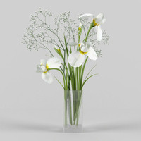 3d model iris gipsofila vase