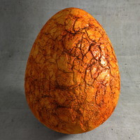 Fossile Stone Egg 02