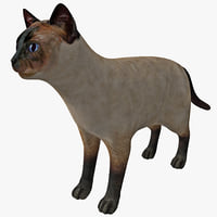 siamese cat rigged 3d model