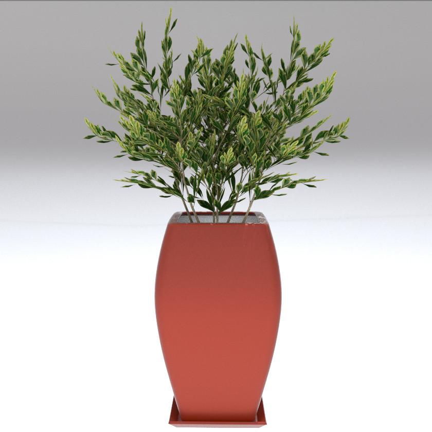 Plant_Model1.jpg