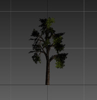 tree resolution gameready 3d model