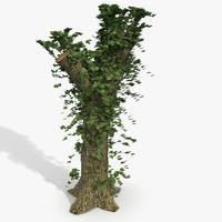 3d wood climb model