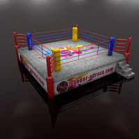 3d model of boxing arena